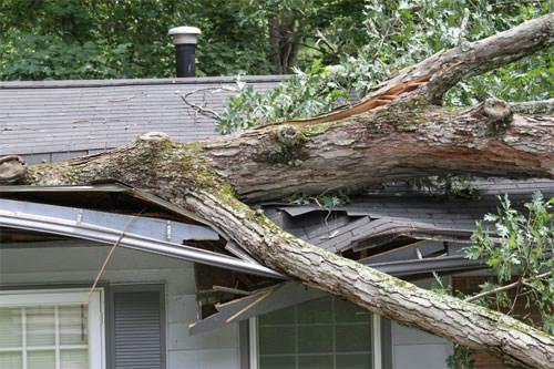 Roof Repair Costs Chesapeake, Virginia & North Carolina